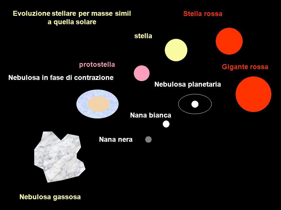 Nebulosa gassosa protostella stella Stella rossa Gigante rossa Nebulosa planetaria Nana bianca Nana nera Nebulosa in fase di contrazione Evoluzione st