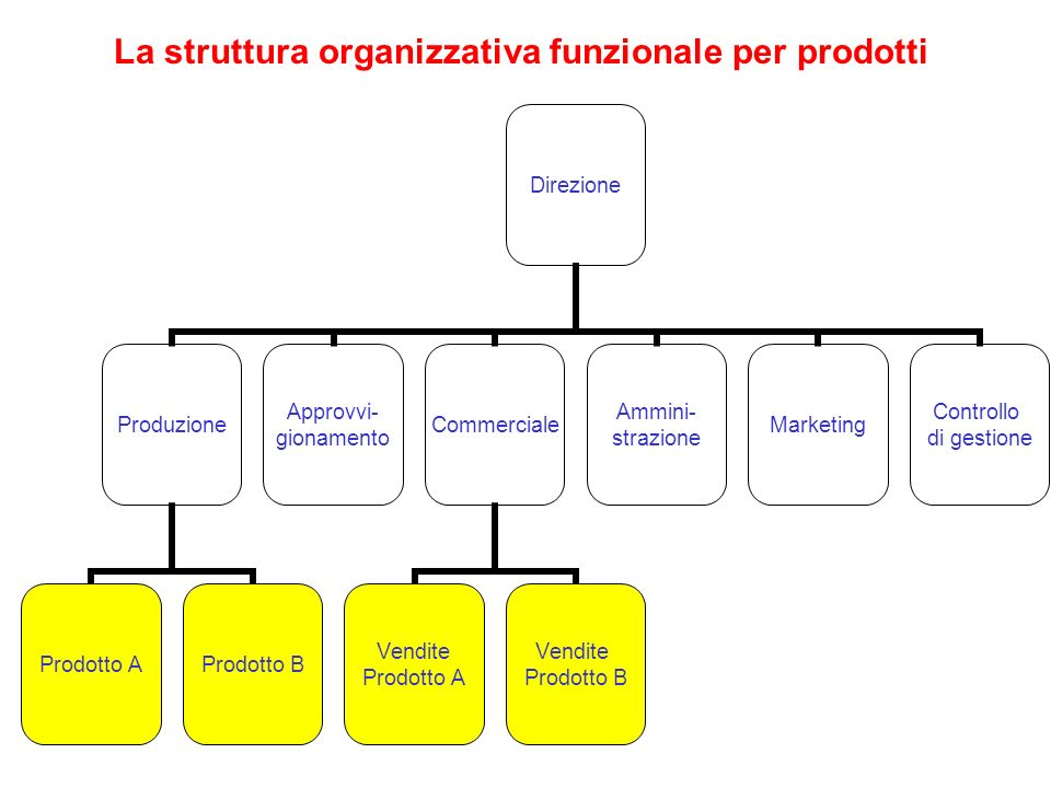 La struttura organizzativa funzionale per prodotti Direzione Produzione Prodotto AProdotto B Approvvi- gionamento Commerciale Vendite Prodotto A Vendi
