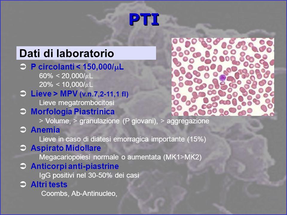 P circolanti < 150,000/ L 60% < 20,000/ L 20% < 10,000/ L Lieve > MPV (v.n.7,2-11,1 fl) Lieve megatrombocitosi Morfologia Piastrinica > Volume, > granulazione (P giovani), > aggregazione Anemia Lieve in caso di diatesi emorragica importante (15%) Aspirato Midollare Megacariopoiesi normale o aumentata (MK1>MK2) Anticorpi anti-piastrine IgG positivi nel 30-50% dei casi Altri tests Coombs, Ab-Antinucleo, Dati di laboratorio