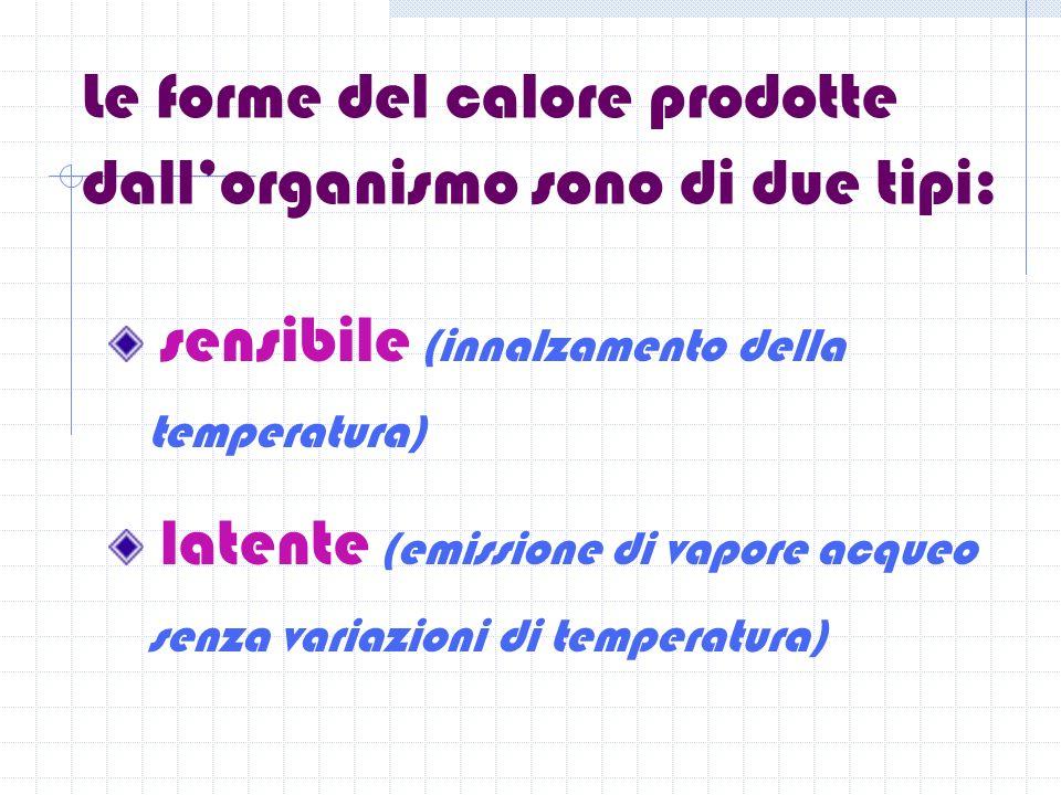 Le forme del calore prodotte dallorganismo sono di due tipi: sensibile (innalzamento della temperatura) latente (emissione di vapore acqueo senza variazioni di temperatura)