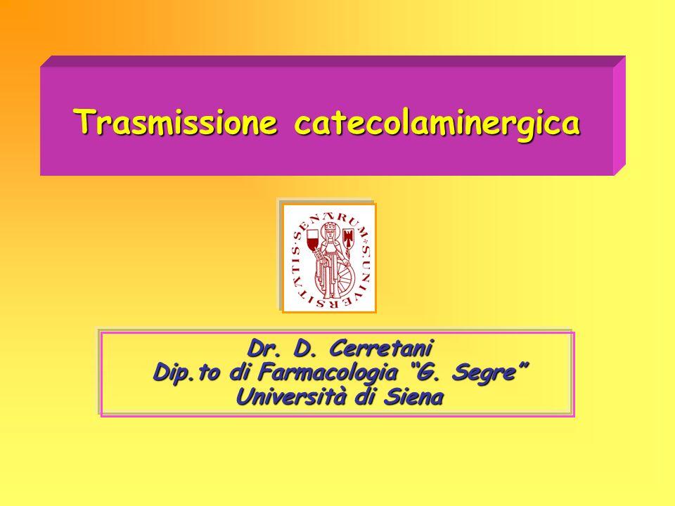 Trasmissione catecolaminergica Dr. D. Cerretani Dip.to di Farmacologia G. Segre Università di Siena