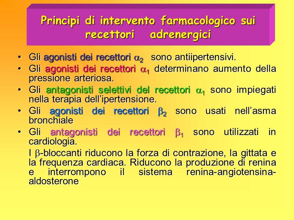 Principi di intervento farmacologico sui recettori adrenergici Gli agonisti dei recettori 2 sono antiipertensivi.Gli agonisti dei recettori 2 sono ant