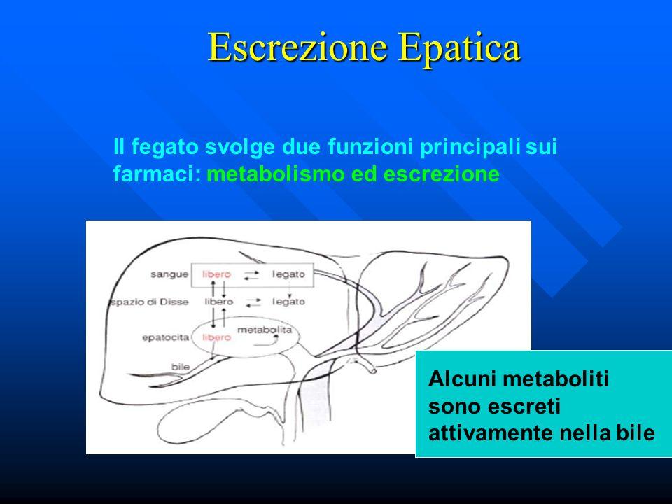 Escrezione Epatica Il fegato svolge due funzioni principali sui farmaci: metabolismo ed escrezione Alcuni metaboliti sono escreti attivamente nella bi