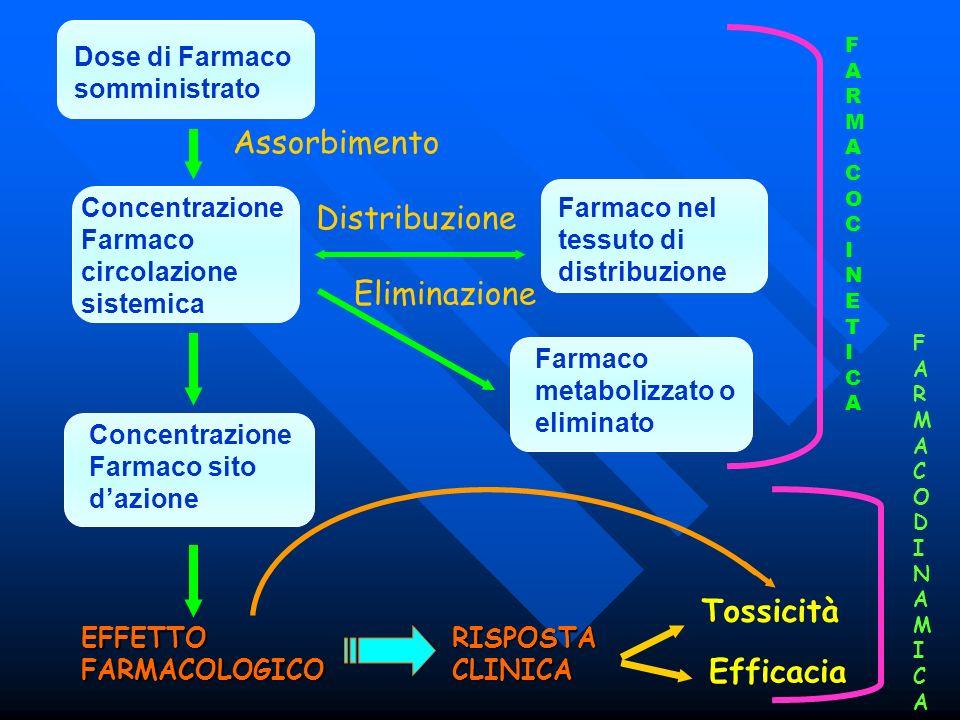 Dose di Farmaco somministrato Concentrazione Farmaco circolazione sistemica Concentrazione Farmaco sito dazione EFFETTO FARMACOLOGICO Farmaco nel tess