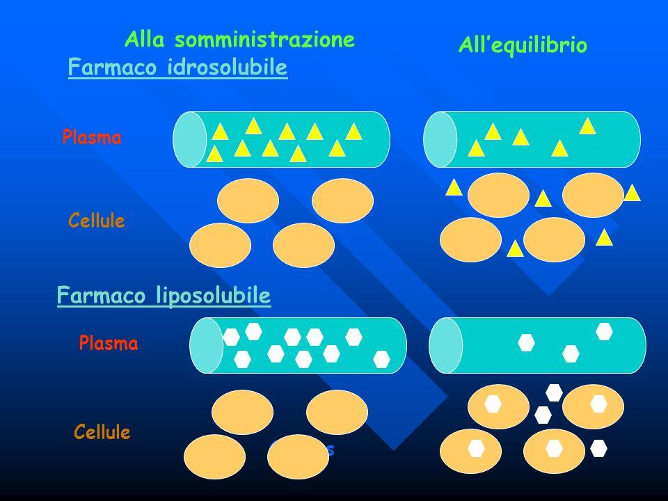 Farmaco idrosolubile Farmaco liposolubile Alla somministrazione Plasma Cellule Plasma Cellules Allequilibrio Cellule