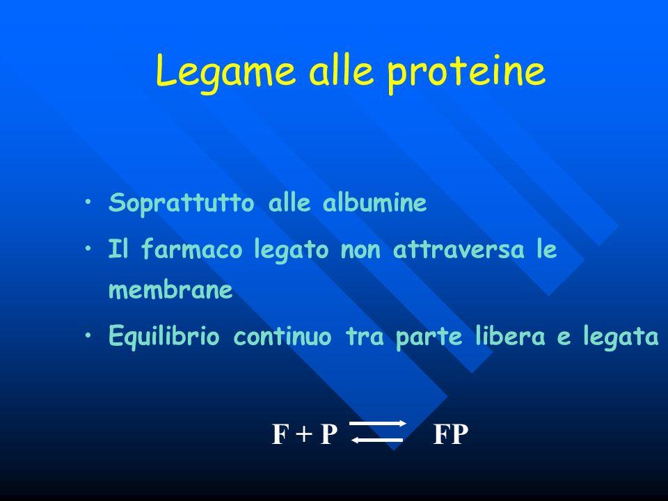 Legame alle proteine Soprattutto alle albumine Il farmaco legato non attraversa le membrane Equilibrio continuo tra parte libera e legata F + P FP