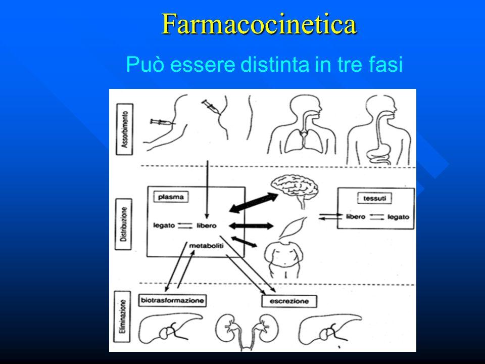 Farmacocinetica Può essere distinta in tre fasi