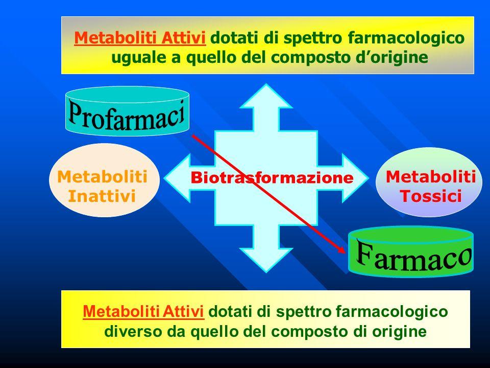 Biotrasformazione Metaboliti Attivi dotati di spettro farmacologico uguale a quello del composto dorigine Metaboliti Attivi dotati di spettro farmacol