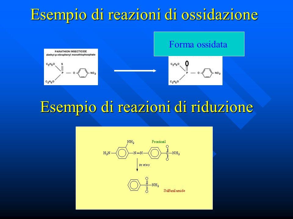 Esempio di reazioni di ossidazione Forma ossidata Esempio di reazioni di riduzione