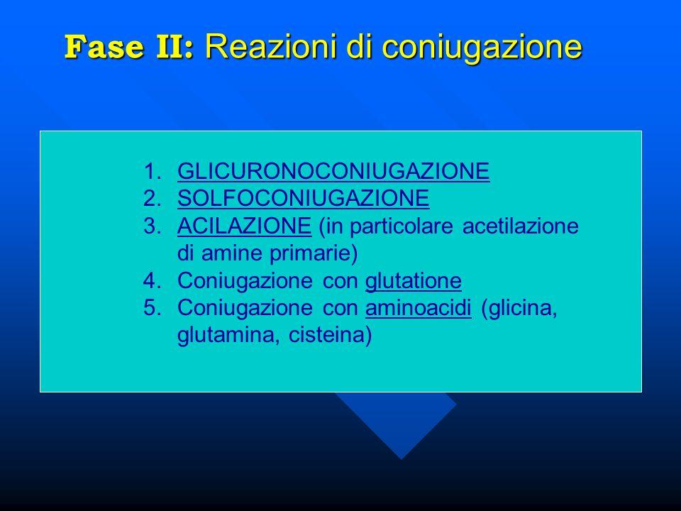 Fase II: Reazioni di coniugazione 1.GLICURONOCONIUGAZIONE 2.SOLFOCONIUGAZIONE 3.ACILAZIONE (in particolare acetilazione di amine primarie) 4.Coniugazi