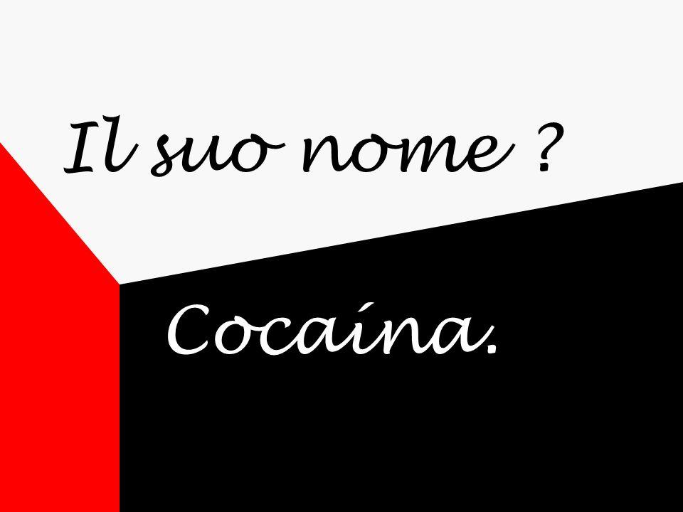 Il suo nome ? Cocaína.