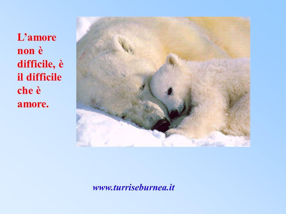 Lamore non è difficile, è il difficile che è amore. www.turriseburnea.it