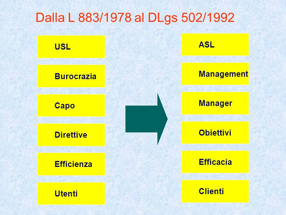 Dalla L 883/1978 al DLgs 502/1992 USL Burocrazia Capo Direttive Efficienza Utenti ASL Management Manager Obiettivi Efficacia Clienti