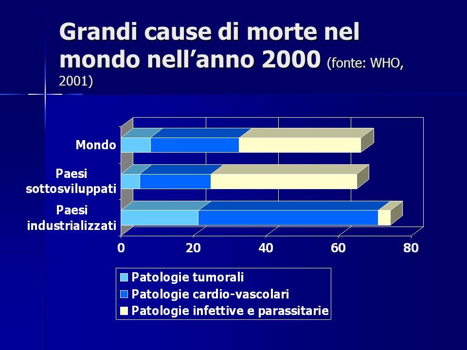 Grandi cause di morte nel mondo nellanno 2000 (fonte: WHO, 2001)