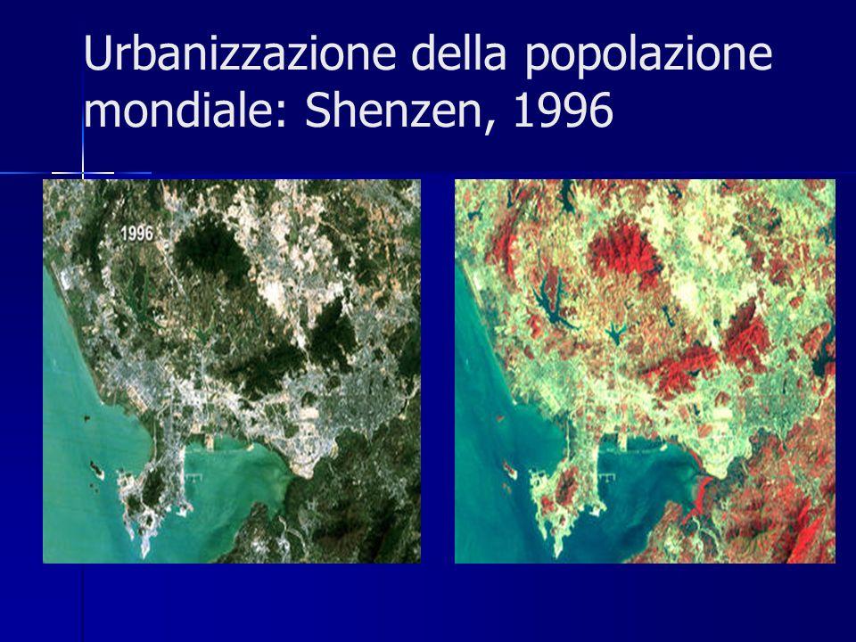Urbanizzazione della popolazione mondiale: Shenzen, 1996