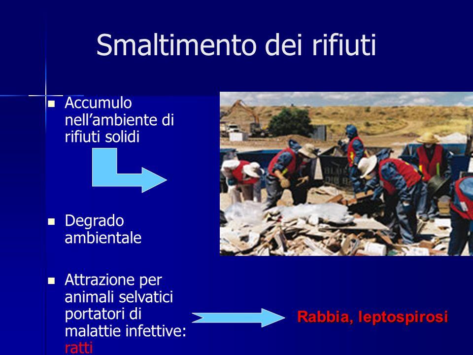 Accumulo nellambiente di rifiuti solidi Degrado ambientale Attrazione per animali selvatici portatori di malattie infettive: ratti Smaltimento dei rifiuti Rabbia, leptospirosi