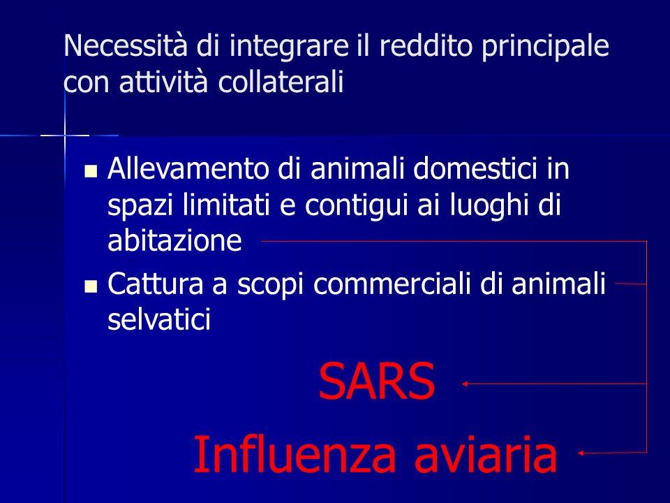 Necessità di integrare il reddito principale con attività collaterali Allevamento di animali domestici in spazi limitati e contigui ai luoghi di abitazione Cattura a scopi commerciali di animali selvatici SARS Influenza aviaria