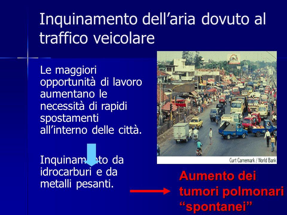 Inquinamento dellaria dovuto al traffico veicolare Le maggiori opportunità di lavoro aumentano le necessità di rapidi spostamenti allinterno delle cit