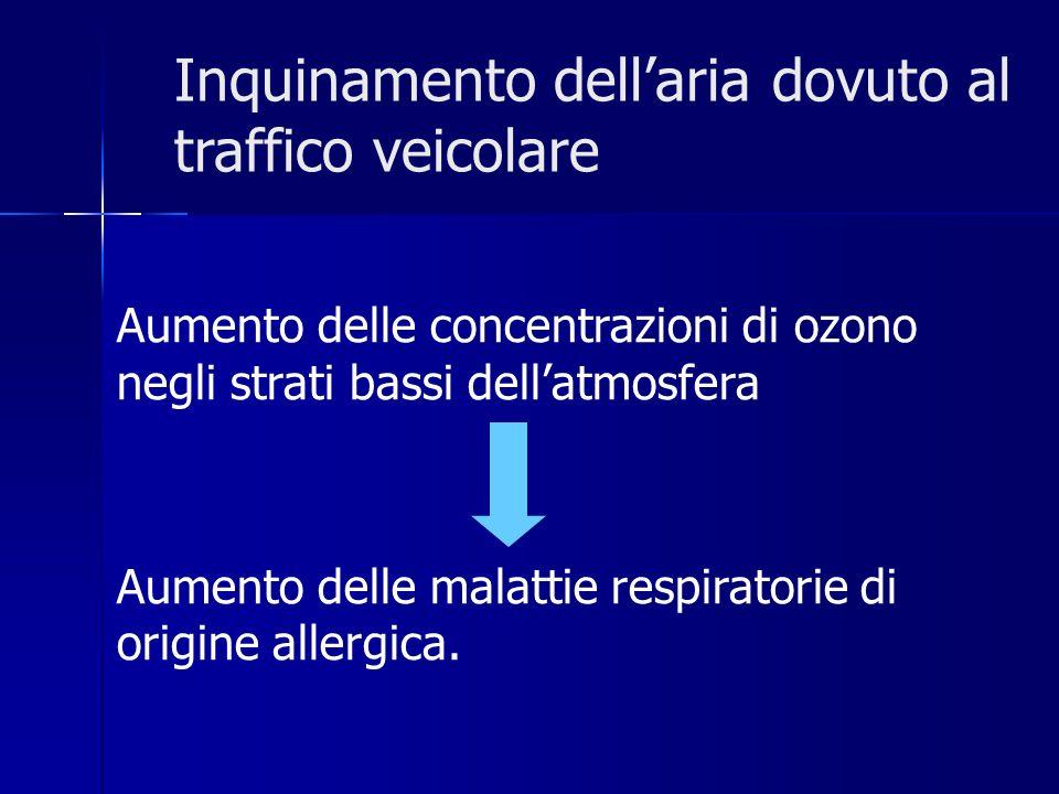 Inquinamento dellaria dovuto al traffico veicolare Aumento delle concentrazioni di ozono negli strati bassi dellatmosfera Aumento delle malattie respiratorie di origine allergica.