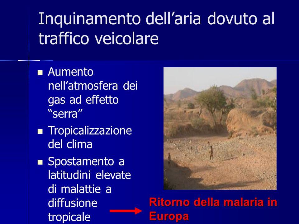 Inquinamento dellaria dovuto al traffico veicolare Aumento nellatmosfera dei gas ad effetto serra Tropicalizzazione del clima Spostamento a latitudini elevate di malattie a diffusione tropicale Ritorno della malaria in Europa