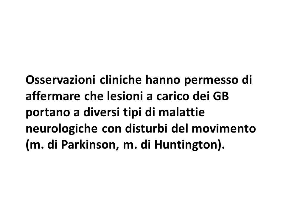 Osservazioni cliniche hanno permesso di affermare che lesioni a carico dei GB portano a diversi tipi di malattie neurologiche con disturbi del movimen