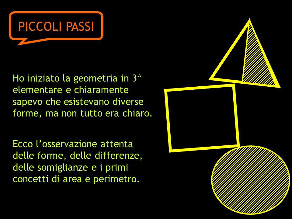 Ho iniziato la geometria in 3^ elementare e chiaramente sapevo che esistevano diverse forme, ma non tutto era chiaro. Ecco losservazione attenta delle