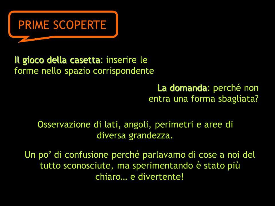Il gioco della casetta casetta: inserire le forme nello spazio corrispondente PRIME SCOPERTE La domanda domanda: perché non entra una forma sbagliata.