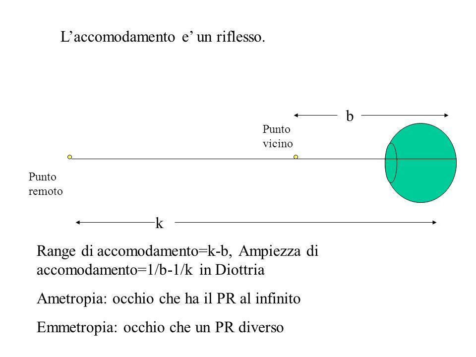 Laccomodamento e un riflesso. Punto remoto k Punto vicino b Range di accomodamento=k-b, Ampiezza di accomodamento=1/b-1/k in Diottria Ametropia: occhi