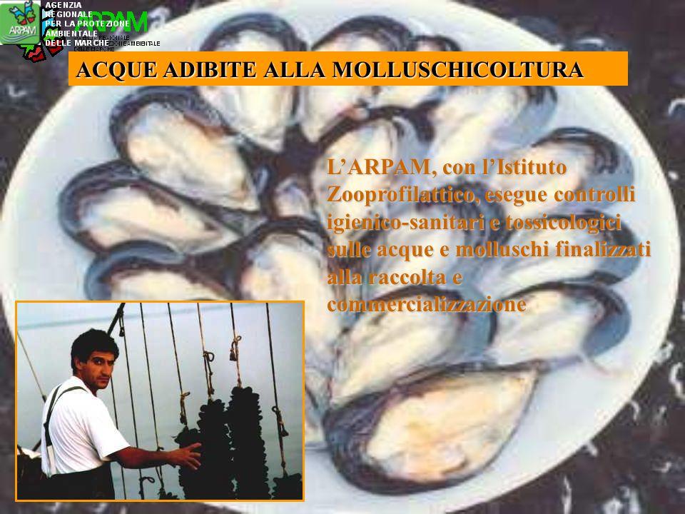 ACQUE ADIBITE ALLA MOLLUSCHICOLTURA LARPAM, con lIstituto Zooprofilattico, esegue controlli igienico-sanitari e tossicologici sulle acque e molluschi finalizzati alla raccolta e commercializzazione
