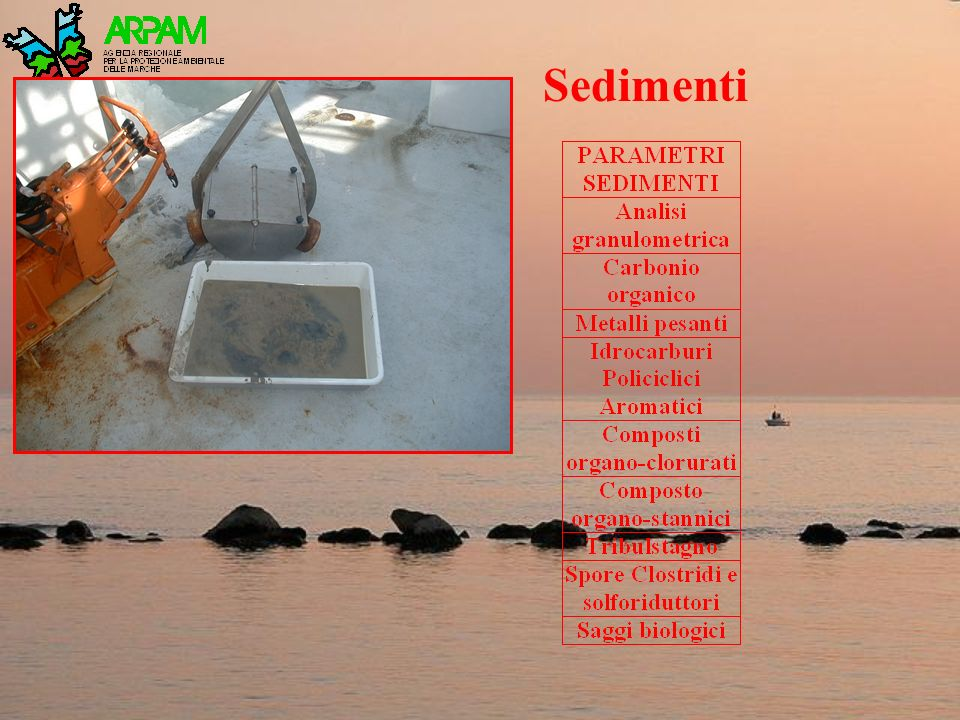 Sedimenti