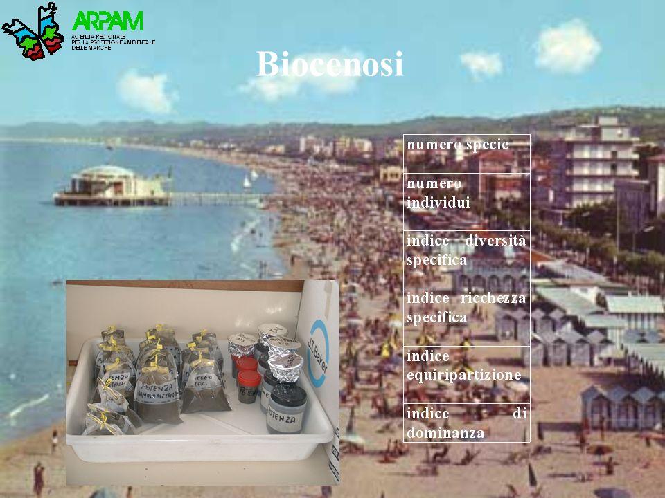 Biocenosi
