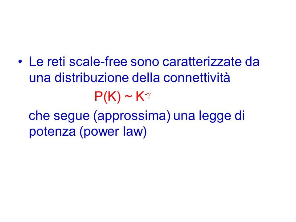 Le reti scale-free sono caratterizzate da una distribuzione della connettività P(K) ~ K - che segue (approssima) una legge di potenza (power law)