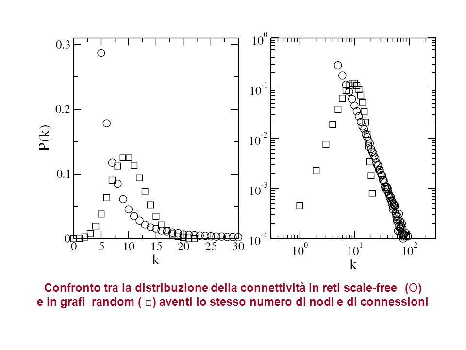 Confronto tra la distribuzione della connettività in reti scale-free (O) e in grafi random ( ) aventi lo stesso numero di nodi e di connessioni