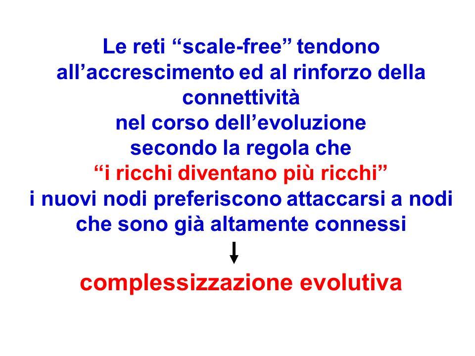 Le reti scale-free tendono allaccrescimento ed al rinforzo della connettività nel corso dellevoluzione secondo la regola che i ricchi diventano più ri