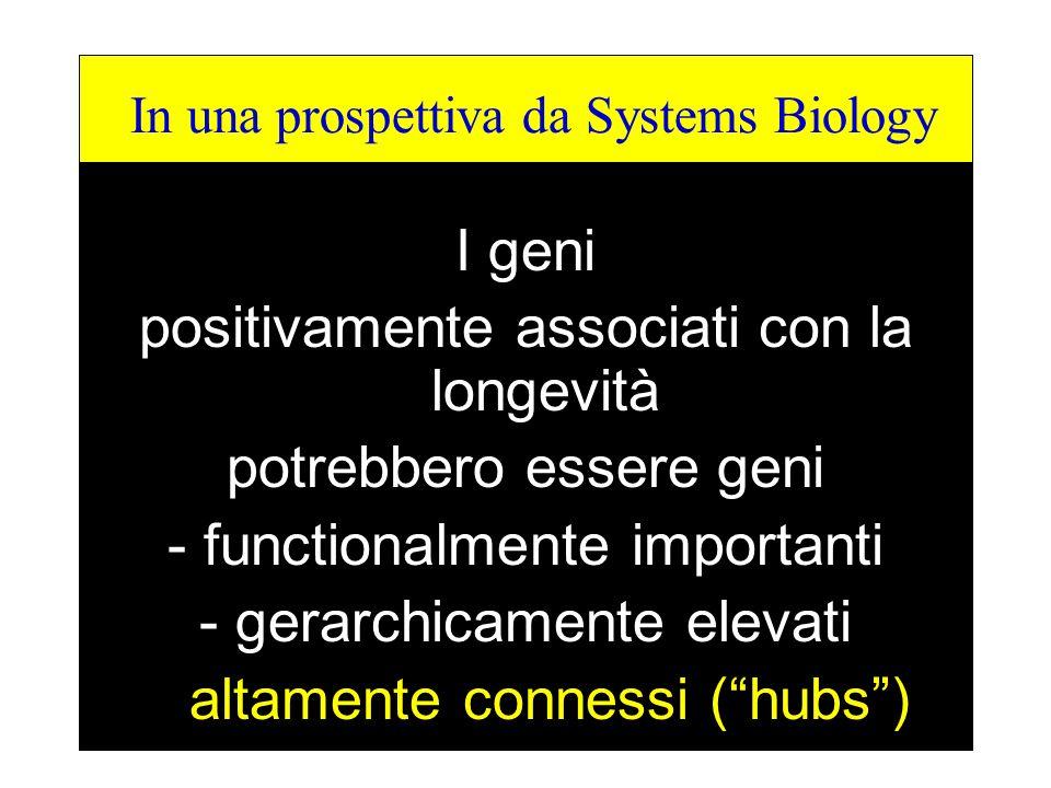 From a I geni positivamente associati con la longevità potrebbero essere geni - functionalmente importanti - gerarchicamente elevati altamente conness