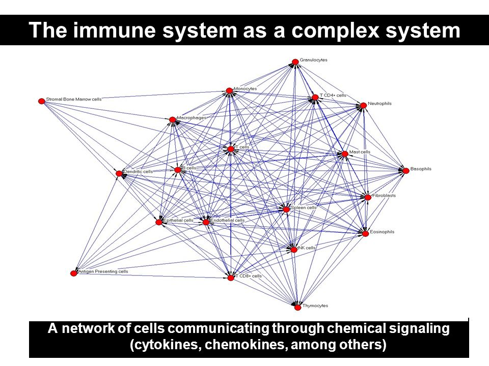 The immune system as a complex system A network of cells communicating through chemical signaling (cytokines, chemokines, among others)