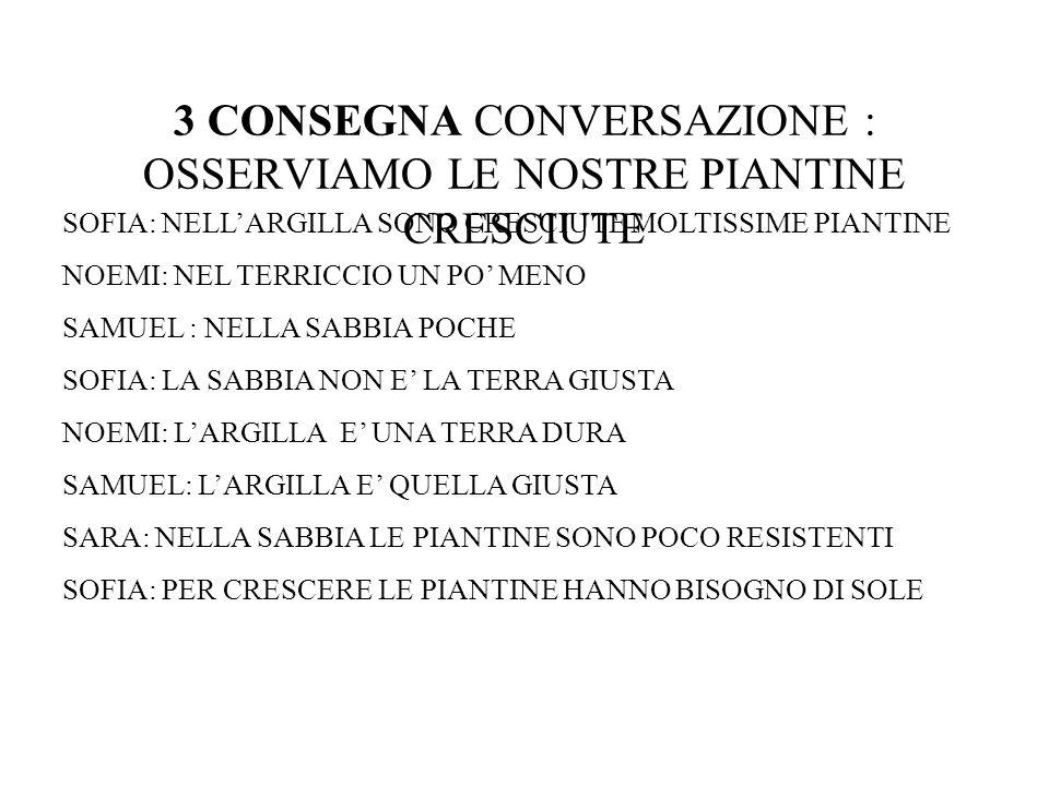 3 CONSEGNA CONVERSAZIONE : OSSERVIAMO LE NOSTRE PIANTINE CRESCIUTE SOFIA: NELLARGILLA SONO CRESCIUTE MOLTISSIME PIANTINE NOEMI: NEL TERRICCIO UN PO ME