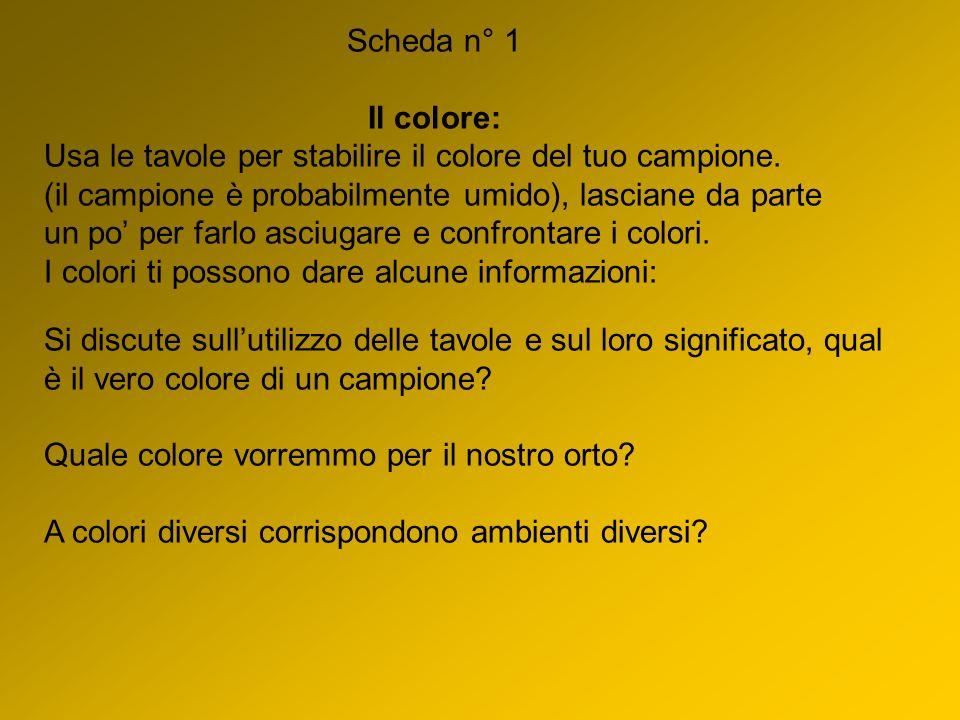 Scheda n° 1 Il colore: Usa le tavole per stabilire il colore del tuo campione. (il campione è probabilmente umido), lasciane da parte un po per farlo