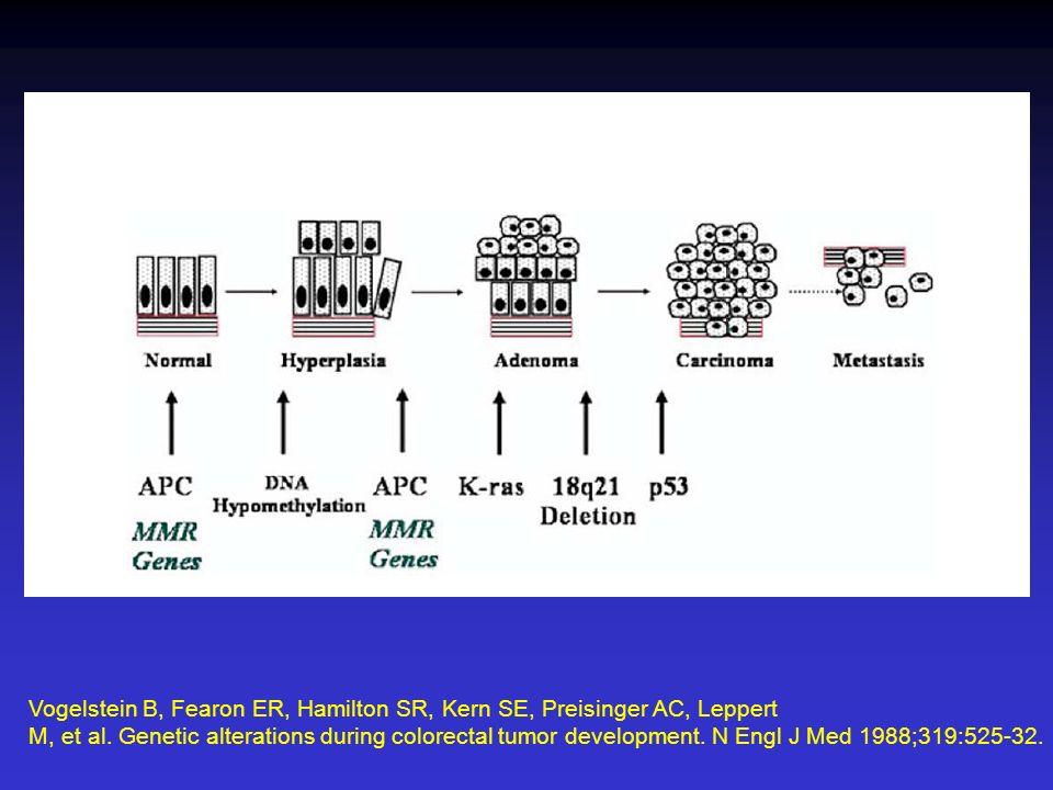 Vogelstein B, Fearon ER, Hamilton SR, Kern SE, Preisinger AC, Leppert M, et al. Genetic alterations during colorectal tumor development. N Engl J Med