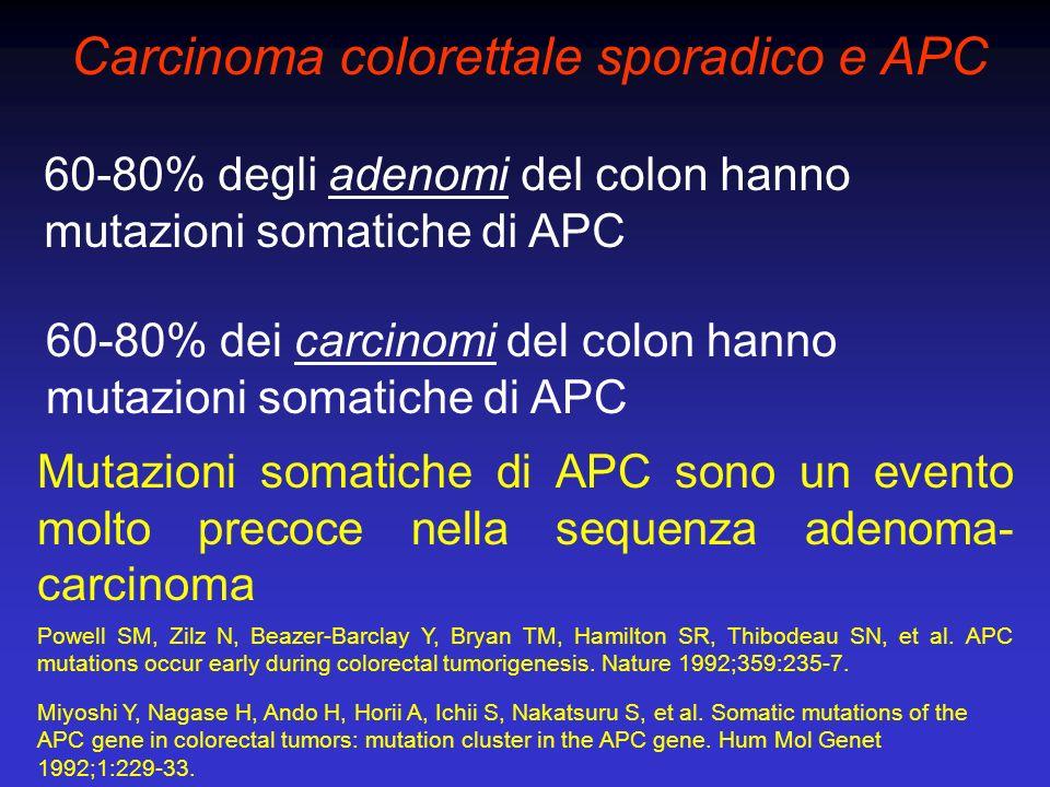 Carcinoma colorettale sporadico e APC 60-80% degli adenomi del colon hanno mutazioni somatiche di APC Mutazioni somatiche di APC sono un evento molto