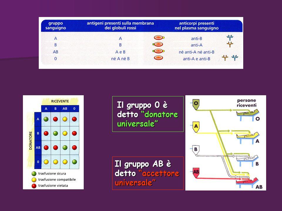 Il gruppo 0 è detto donatore universale Il gruppo AB è detto accettore universale