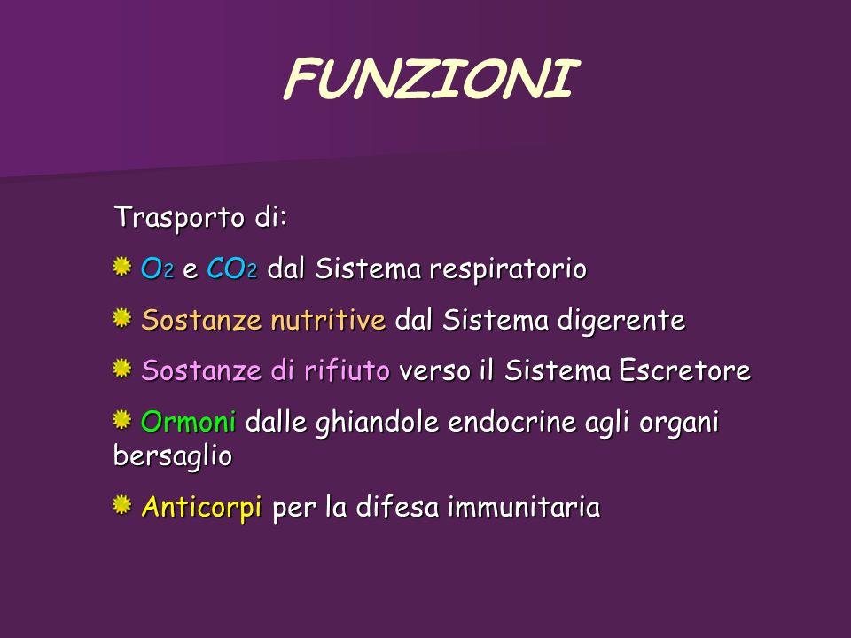 Trasporto di: O 2 e CO 2 dal Sistema respiratorio O 2 e CO 2 dal Sistema respiratorio Sostanze nutritive dal Sistema digerente Sostanze nutritive dal
