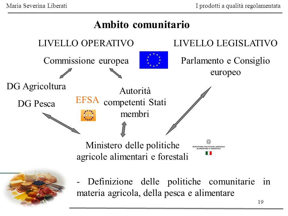 19 Ambito comunitario LIVELLO OPERATIVO Commissione europea DG Agricoltura DG Pesca Autorità competenti Stati membri Ministero delle politiche agricol