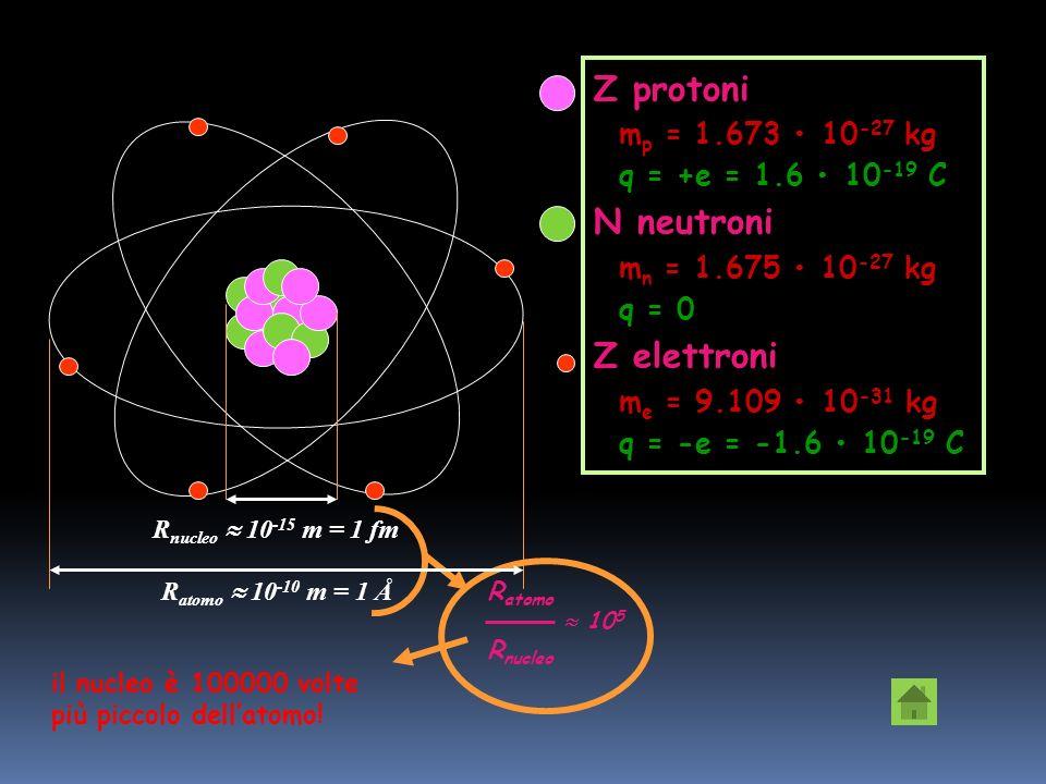 protonim p neutronim n elettronim e m p : m n : m e 1 : 1 : 0,00054 nucleo