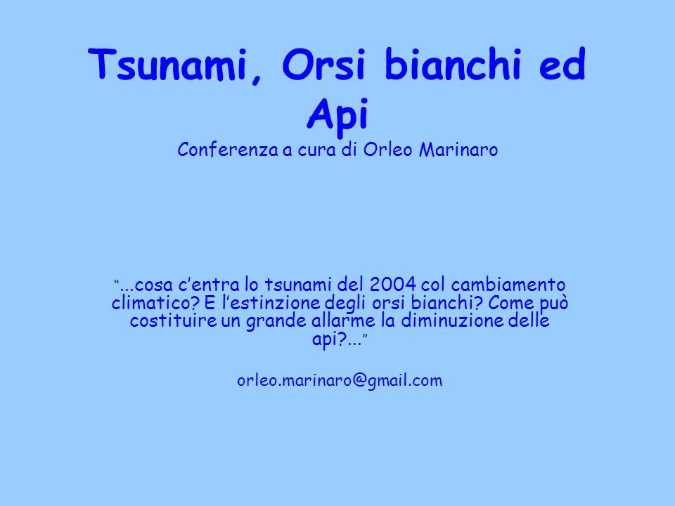 Tsunami, Orsi bianchi ed Api Conferenza a cura di Orleo Marinaro...cosa centra lo tsunami del 2004 col cambiamento climatico? E lestinzione degli orsi