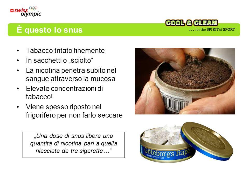 Tabacco tritato finemente In sacchetti o sciolto La nicotina penetra subito nel sangue attraverso la mucosa Elevate concentrazioni di tabacco! Viene s