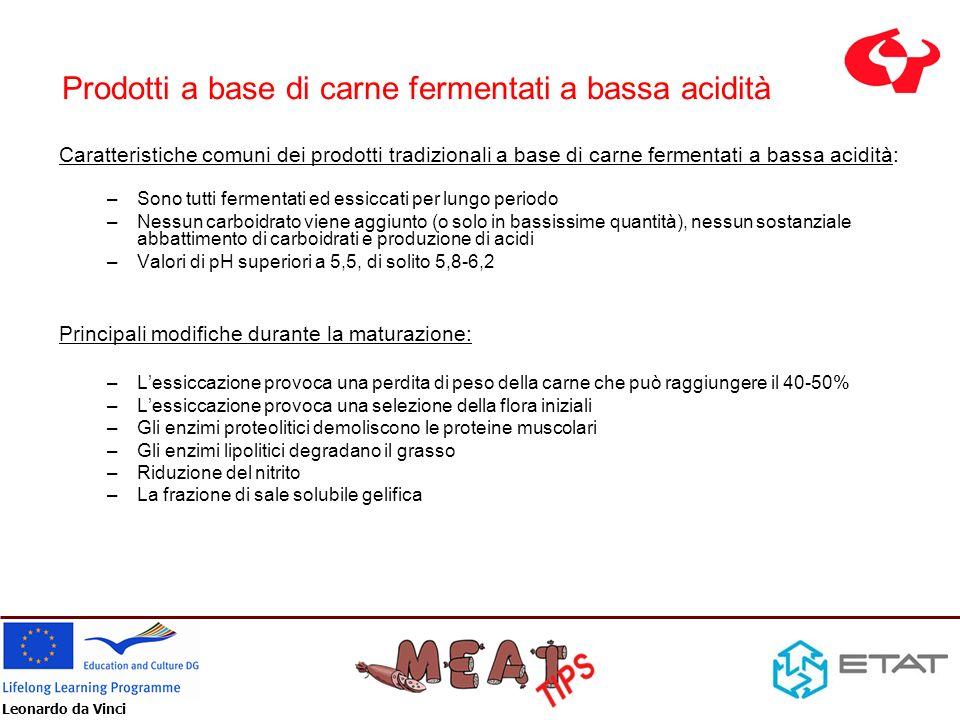 Leonardo da Vinci -Le colture starter come colture microbiche pure sono in uso da circa 60 anni nel settore della carne Niinivaara – Europa Niven - USA -In origine lacidificazione e la riduzione dei nitrati è stato l obiettivo principale nelle produzioni degli Stati Uniti e dEuropa -Colture starter di batteri acido produttori (LAB) sono aggiunte da sole o in miscela -Tendenze: Temperature dincubazione più bassa in Europa (20-24°C) Temperature dincubazione più alte negli Stati Uniti (circa 37°C) Prodotti a base di carne fermentati ad alta acidità