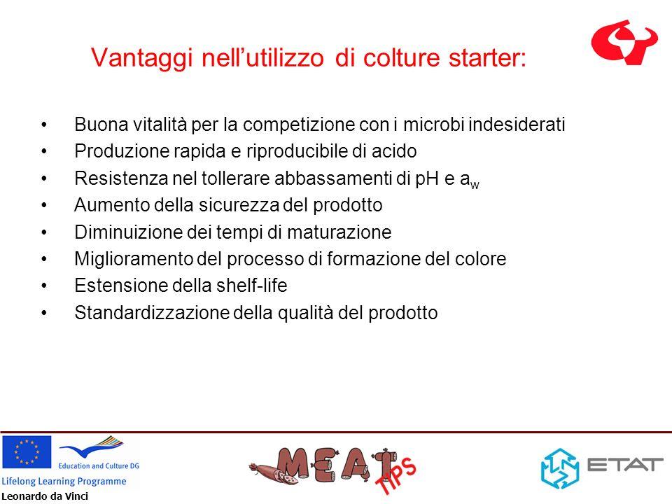 Leonardo da Vinci Vantaggi nellutilizzo di colture starter: Buona vitalità per la competizione con i microbi indesiderati Produzione rapida e riproduc