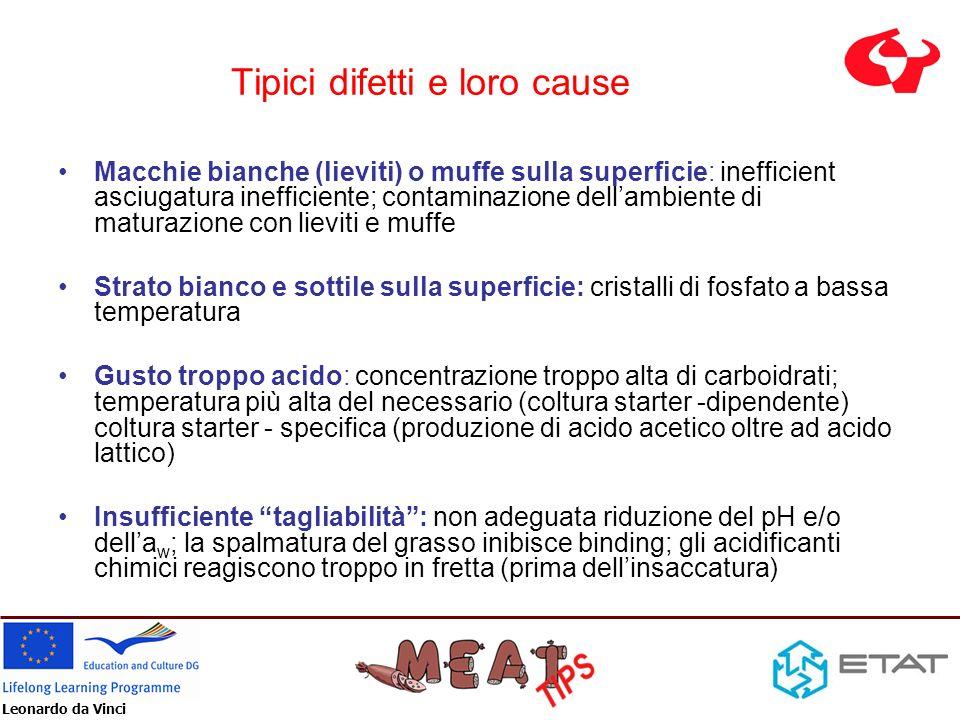 Leonardo da Vinci Tipici difetti e loro cause Macchie bianche (lieviti) o muffe sulla superficie: inefficient asciugatura inefficiente; contaminazione
