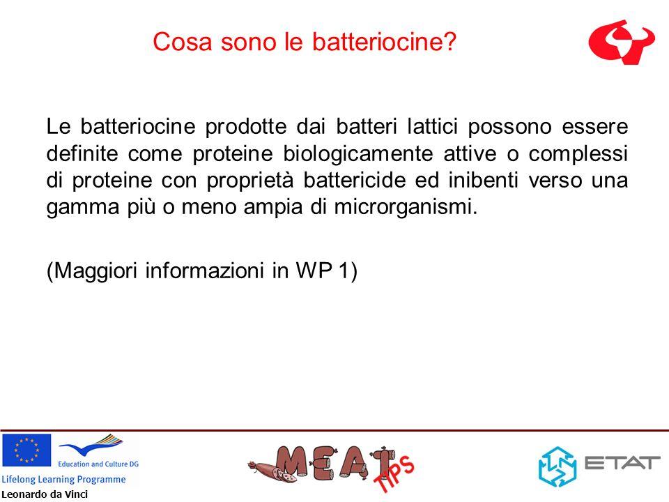 Leonardo da Vinci Principali batteriocine MicrorganismiBatteriocinaMicrorganismi inibiti Lactococcus lactisNisinaBacillus, Listeria, Clostridium Lactobacillus sakeiSakacinaListeria Leuconostoc gelidumLeucocinaListeria, Enterococcus Pediococcus acidilacticiPediocinaClostridium, Listeria, Bacillus Carnobacterium piscicolaCarnocinaBacillus, Clostridium, Listeria Lactobacillus curvatusCurvacinaListeria